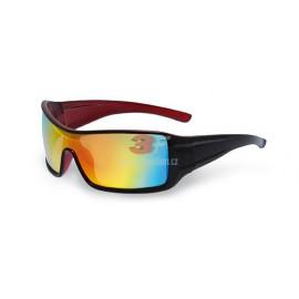 Sluneční brýle Master 1437