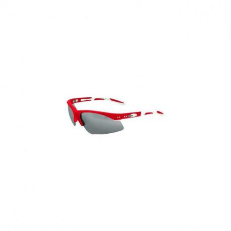 Sluneční brýle Leader1385z